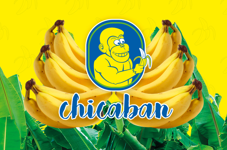 header_chicaban.jpg